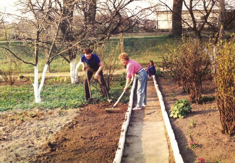 Żurek 1991